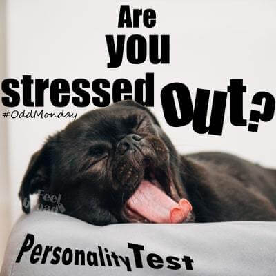 "Are you stressed out? ""Day off"" edition"