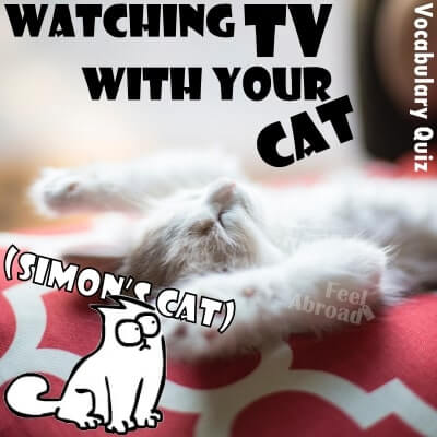 Watching TV with your cat (Simon's cat)