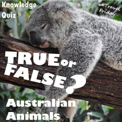 Australian Animals – True or False?