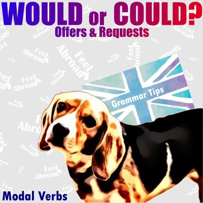 Would or Could? – Offers & Requests